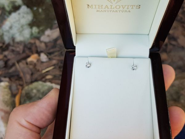 zsuzsannas platinum earrings