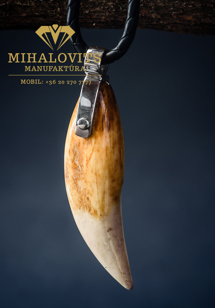 bear-fore-tooth-silver-pendant